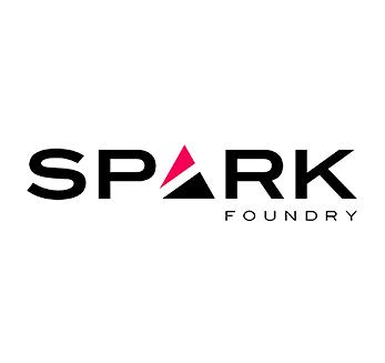 spark_foundry_moldova